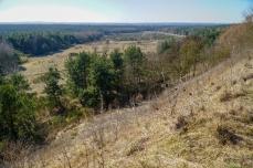 Blick von der Mitte des Gelände nach Südwesten