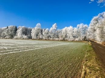 Neulich, als alle schon dachten der Winter ist vorbei ...