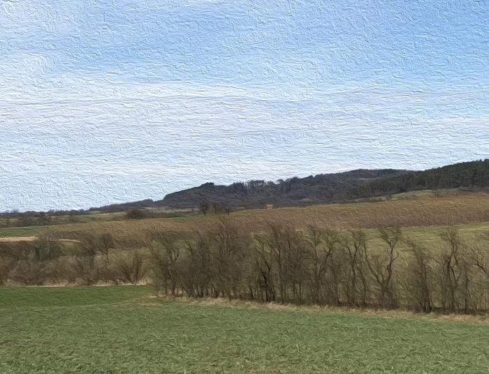 die Landschaft wird so langsam wieder grün