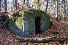 Steinbruch Ohrwaschl