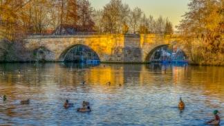 Die Alte Regnitzbrücke zur Golden Stunde ⠀⠀⠀⠀⠀⠀⠀⠀⠀⠀⠀⠀