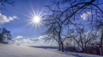 Winterliche Sonnengrüße aus dem Haarbachwald⠀⠀⠀⠀⠀⠀⠀⠀⠀⠀