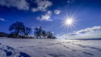 Winterliche Sonnengrüße aus dem Haarbachwald⠀