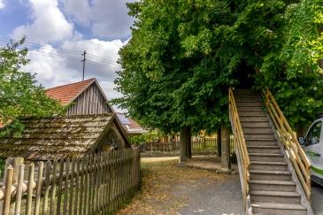 Tanzlinde Limmersdorf