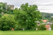 Thuisbrunn mit Burg