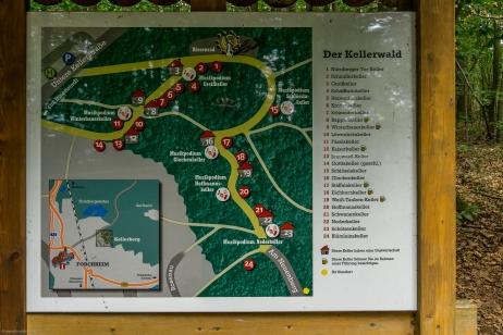 Übersicht über die einzelnen Keller im Kellerwald bei Forchheim