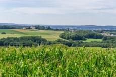 landschaftliche Impression mit Schloß Jägersburg
