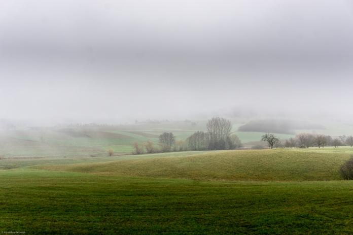 Im Nebel ruht die Welt