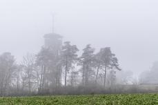 Aussichtsturm auf der Hohenmirsberger Platte