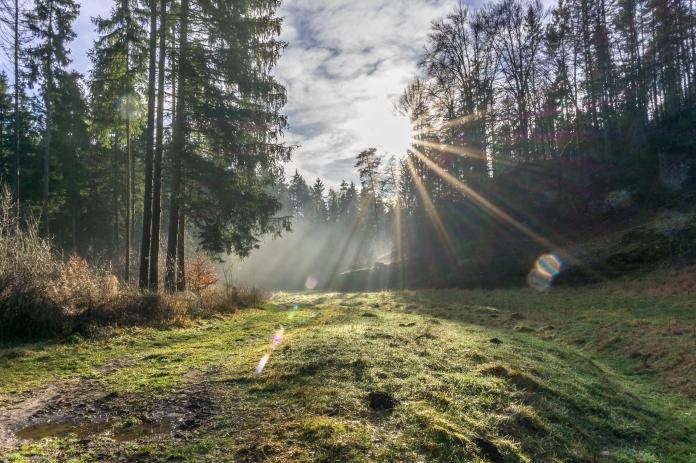 Sonne und Bodennebel im Paradiestal