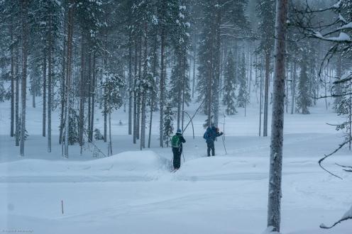 Äkäslompolo / Lappland; Tag 7, Polarlichter (Aurora borealis)