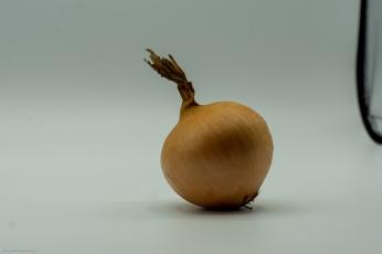 ganze Zwiebel