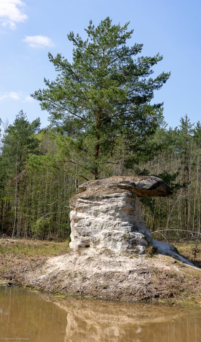 """Sebalder Reichswald und """"Panorama-Fotografie"""""""